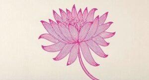 lotus: pink w/ stem